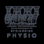17848-TwinPro-Spring-Side-Physio-Logo-HALE-NAVY_Web